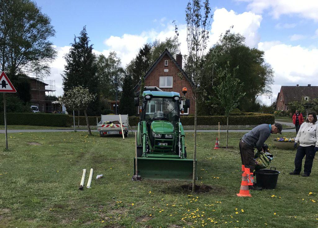 Baumpflanzarbeiten